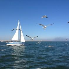Urlaub an der Nordsee
