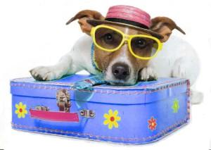 Urlaub günstig buchen